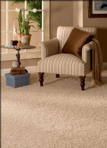 Carpets Rugs Seattle